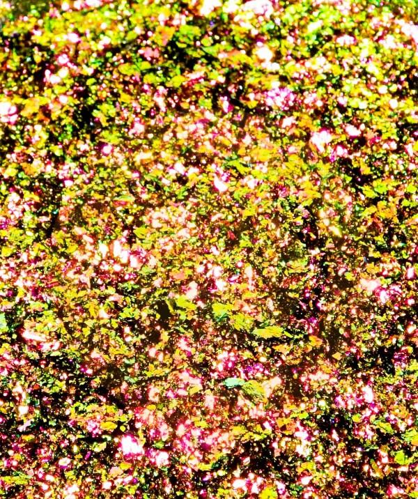 Perfect Pearls & Pigments - ULTRASHIFT CHAMELEON FLAKE - SATURN